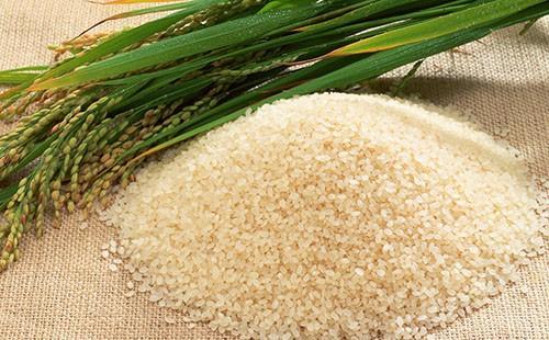 Зелени уши от ориз и хълм от зърна